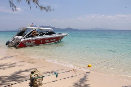 Paradise on Koh Rok Island - Picture of Koh Rok Island, Ko Lanta - TripAdvisor