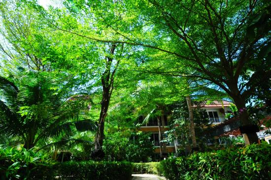 R-Mar Resort and Spa-Garden - Picture of R Mar Resort and Spa ...