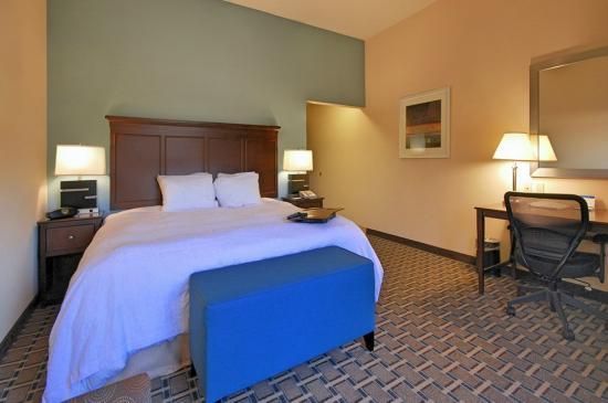 Hampton Inn & Suites New Iberia: Standard King Bed