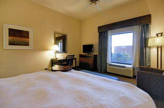 Hampton Inn & Suites New Iberia : Standard King