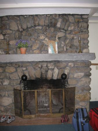 Windflower Inn: Fireplace