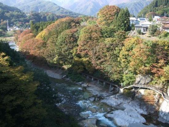 Suwakyo: 利根川沿いの新緑や紅葉が美しい