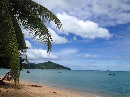 show user reviews bang saray beach sattahip chonburi province