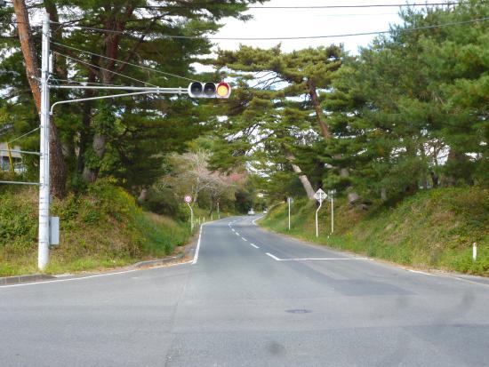 陸前浜街道並木道