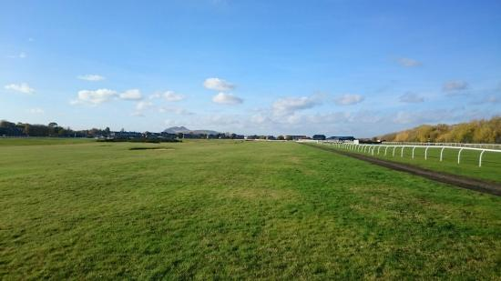 Musselburgh Links