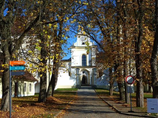Bazilika Nanebevzeti Panny Marie a Svateho Mikulase