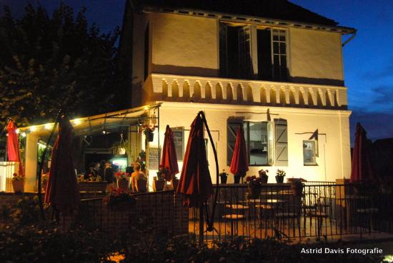 Le Pukèko : pukeko in the evening