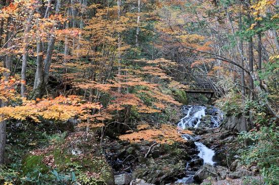 Okura Falls: おおくら滝遊歩道入口