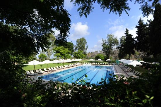 Carmel Forest Spa Resort by Isrotel Exclusive Collection: Outdoor Pool