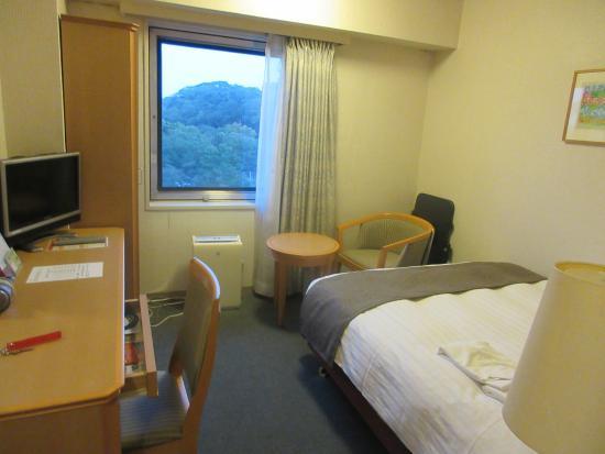 Tokyu Inn Wakayama : まあまあの部屋に窓からは城