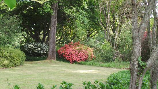 The Edge Mountain Retreat: Nutswood gardens
