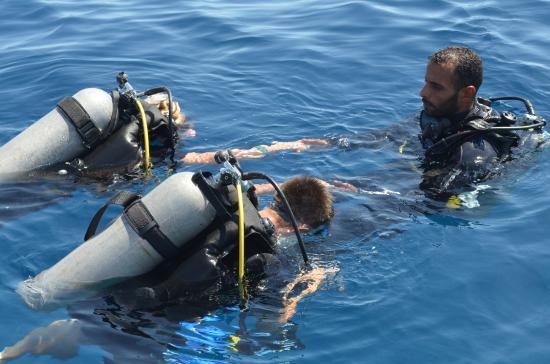 Ra 39 s nasrani reef oasis dive club - Reef oasis dive club ...