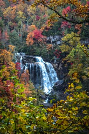 Three Pines View: Upper Whitewater Falls