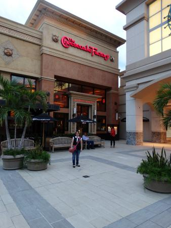 ... Local comercial venta de ropa deportiva americana centro comercial Las  Américas. Caribe Hilton San Juan  Centro Comercial Las Américas c012141aa4d50