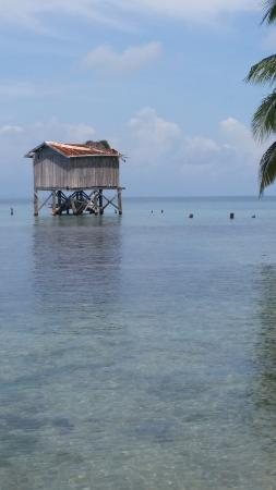 Joe Jo's By The Reef: Ruined Shack on the Water