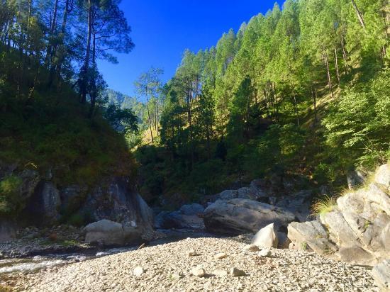 camp pine riviera  bhimtal  campground reviews  photos