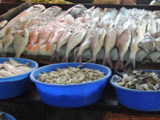 Kimansion Inn: Buy fresh fish at the market and have a nearby restaurant cook it for you!