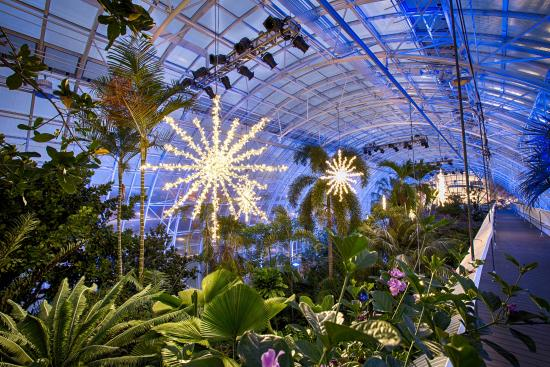 Myriad Botanical Gardens Inside The Crystal Bridge At Christmastime