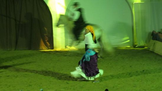 Cabaret Equestre des Dunes : danze e cavalli