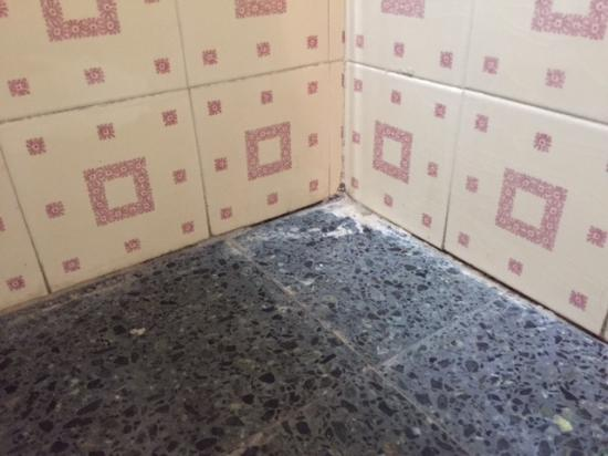 Hotel Pirene : laterales baño