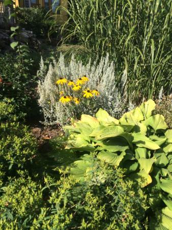 Windsor, Canadá: Gardens