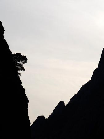 Kazankaya Kanyonu