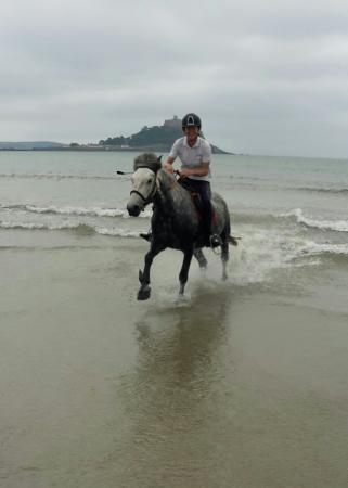 Ludgvan, UK: Tremenheere Riding Stables