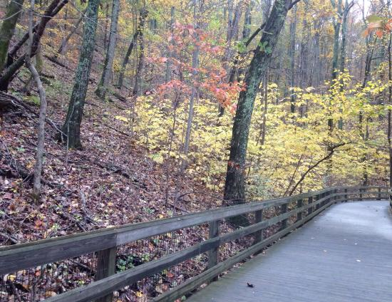 Saunders-Monticello Trail: photo1.jpg
