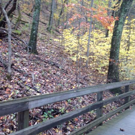 Saunders-Monticello Trail: photo2.jpg