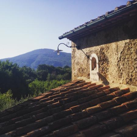 Ciciano, Italia: View from Casa Ada kitchen window