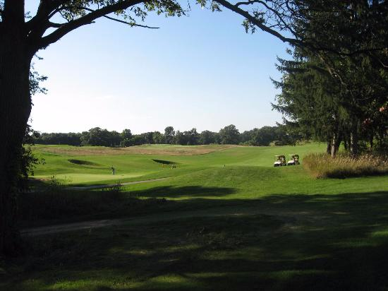 Grass Lake, MI: Calderone Golf Club