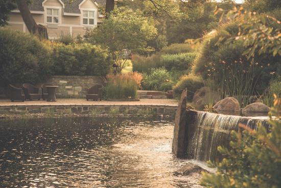 Hotel Le Bonne Entente: Jardins
