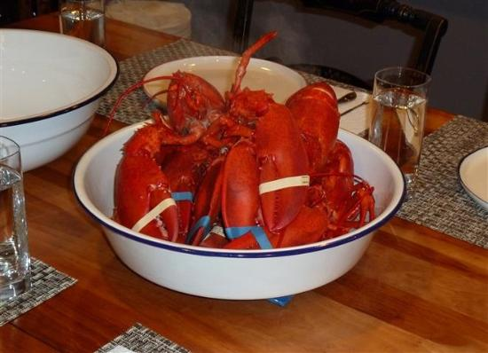 Gaspesie Region, Canada: Lobster for dinner