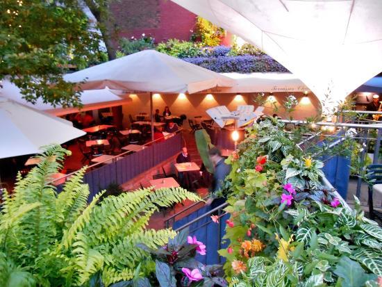 Jardin Nelson Picture Of Jardin Nelson Montreal Tripadvisor