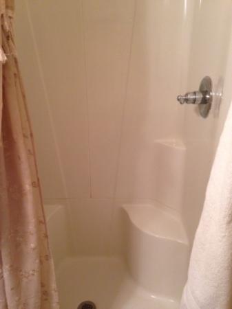 Hamilton House B&B: Shower stall