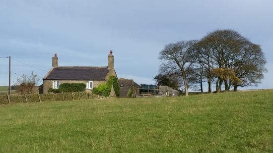 Рейнбоу, UK: View from field looking towards Common Barn Farm
