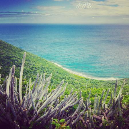 Biras Creek Trail : The views!