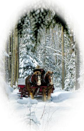 Thunder Bay Resort: Top 10 Sleigh Ride in USA
