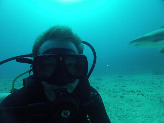Simpson Bay, St. Martin/St. Maarten: Me and a shark :D