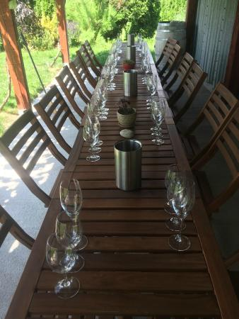 Stoneboat Vineyards : Sparkling Wine Experience under the Pergola