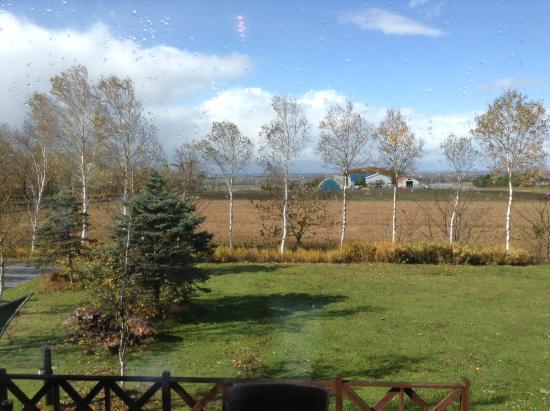 Harvest: 窓からの風景
