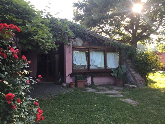 La Chiesuola: 정원