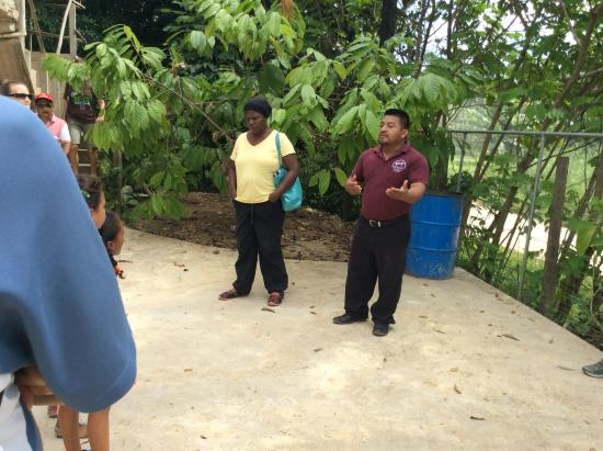Punta Gorda, Belize: Starting our tour with the owner of Ixcacao