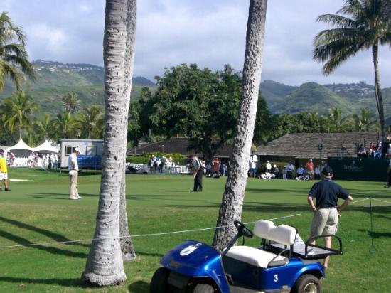 Hawaii Kai Golf Course : ハワイカイゴルフコース