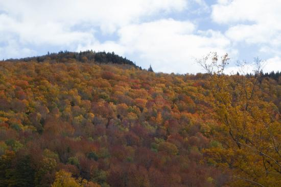 Backroad Discovery Tours : Vermont fall