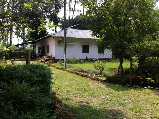 Balipara, Hindistan: Bungalow