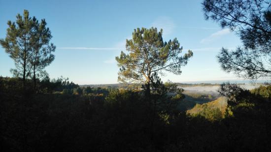 Saint-Martial de Gimel, Frankrijk: Vue de la terrasse au petit matin.