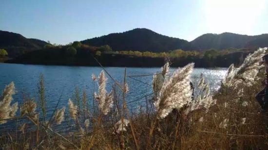 Miyun Reservoir : 景色