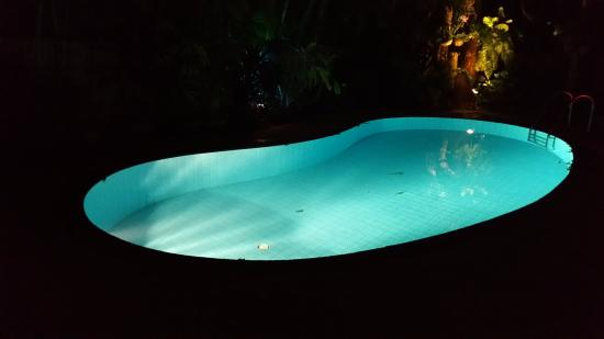 Coconut Paradise: pool at night