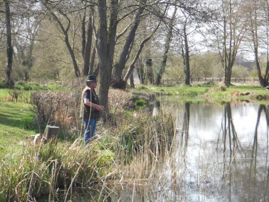 Larkwood Trout Fishery: West Stow Lake.